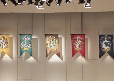 A2_MG_1404 hogwarts banners on shell
